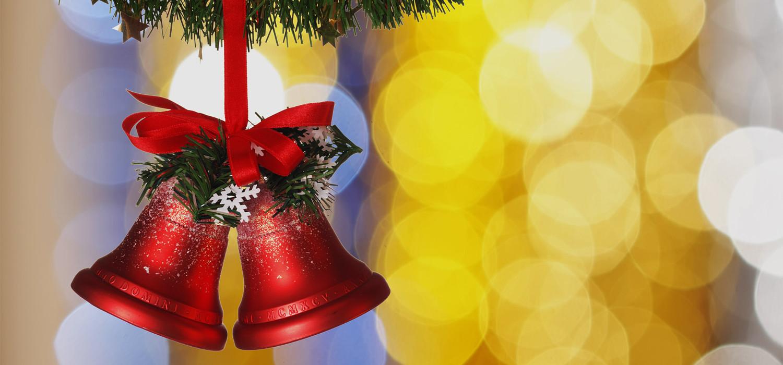 Veelgestelde vragen over Nordmann Excellent kerstbomen in Lijnden