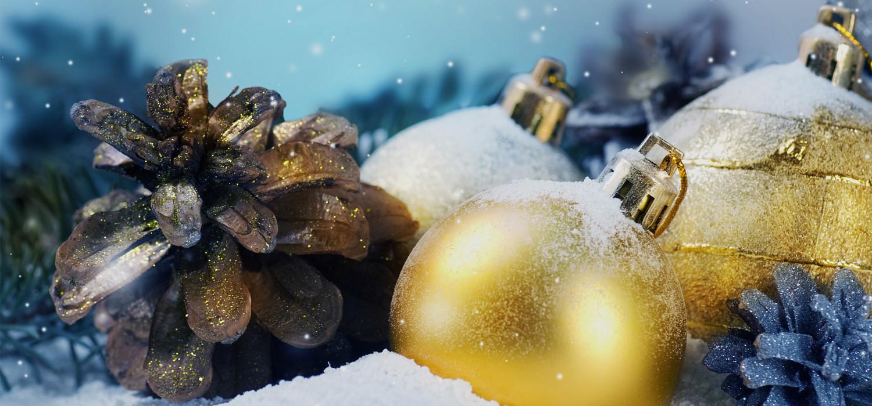 Kerstboom bezorgen in regio Lijnden
