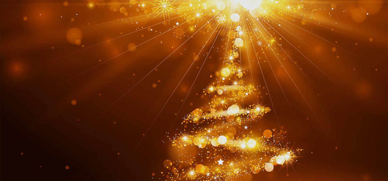 Kerstbomen voor bedrijven in Lijnden